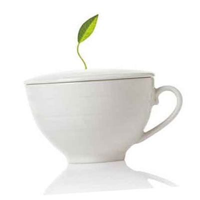 когда пить зеленый чай для похудения